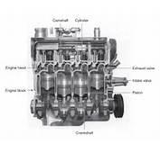 Cutaway Diagram Of A Four Cylinder Gasoline Engine  Biology Forums