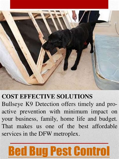 cost of bed bug extermination bed bug pest control cost stunning heat bed bugs why settle for pest controlwe
