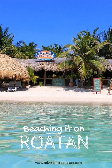 infinity bay roatan all inclusive 17 best images about roatan infinity bay and coral vista