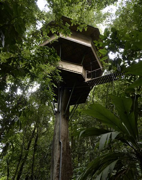 real treehouse real estate at finca bellavista treehouse community in
