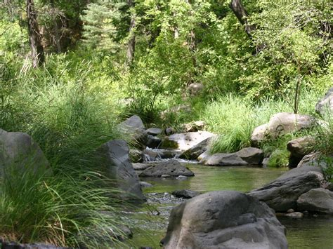 2 5 acre treed flagstaff lot with a 2 car garage workshop mountain home on 2 5 acres private wildlife flagstaff