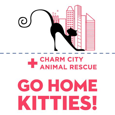 charm city animal rescue custom ink fundraising