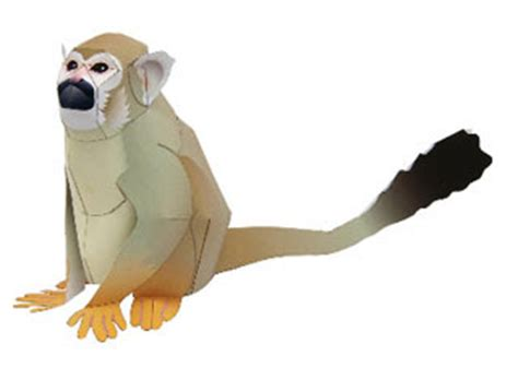 Papercraft Monkey - squirrel monkey papercraft paperkraft net free
