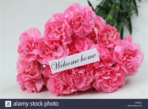 home flower welcome home card with pink carnation flower bouquet stock