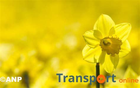 regarder la lutte des classes film complet en ligne gratuit hd cao bloemen en plante 28 images transport online