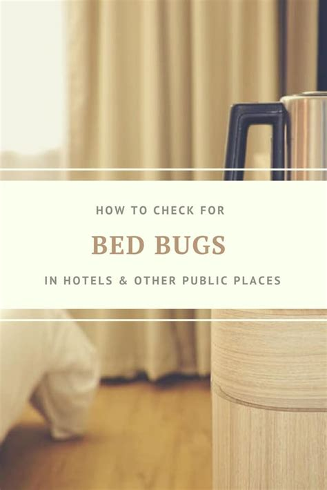 check  bed bugs  hotel rooms   public