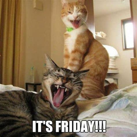 Fun Friday Meme - 80 it s friday memes 2017