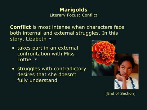 Themes Of The Story Marigolds | marigolds