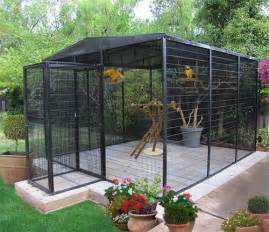 25 best ideas about large bird cages on pinterest large