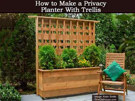privacy planter  trellis