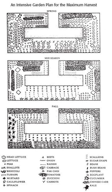 Intensive Gardening Layout I This Design For A Raised Planter It Maximizes Space For And Access To All Plants This