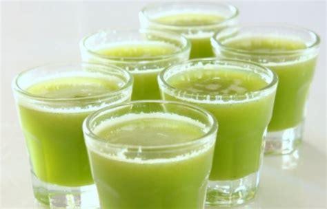 Top Jus Diet Fiforlif Obat Herbal Pelangsing Tubuh Badan obat buah kolesterol fiforlif hajar perut buncit