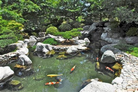 San Diego Pond And Garden by Park S Japanese Friendship Garden Grows Tranquility San