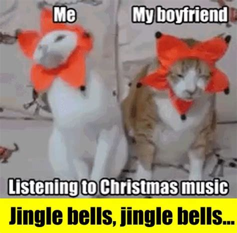 Christmas Music Meme - best 25 christmas cat memes ideas on pinterest funny