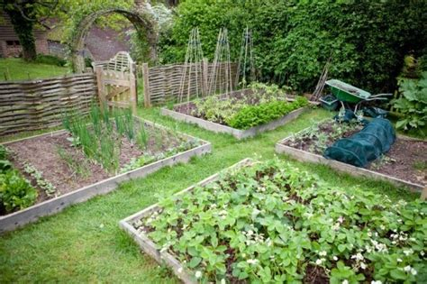 self sufficient backyard 50 resources to help you become more self sufficient