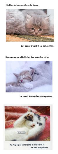 all cats have aspergers all cats have asperger syndrome 187 lighthouse resources