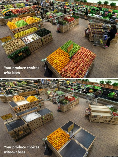 Do You Grocery Shop With Or Without A List by This Is What Your Grocery Store Looks Like Without Bees