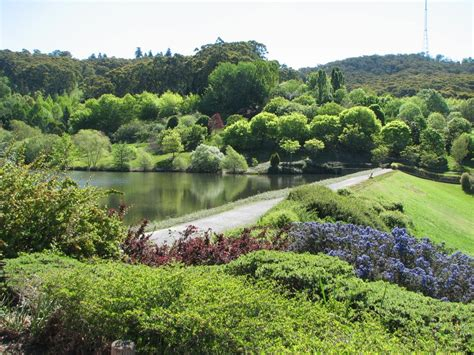 Mt Lofty Botanical Gardens Mount Lofty Botanic Garden Academic And Cultural