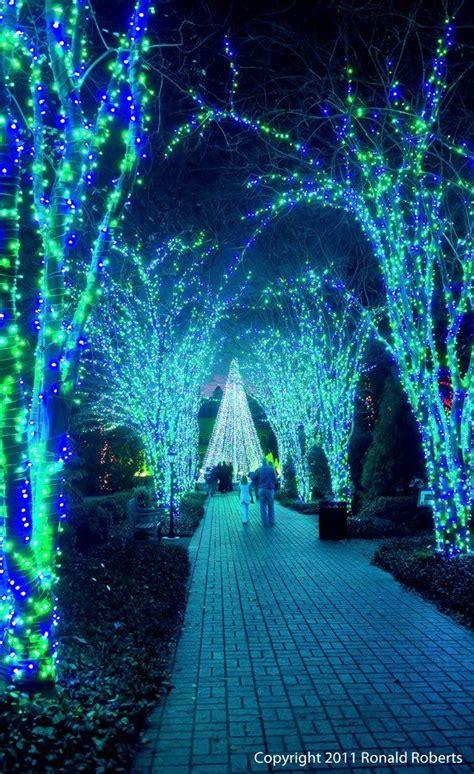 atlanta botanical garden lights walk atlanta botanical garden lights will guide
