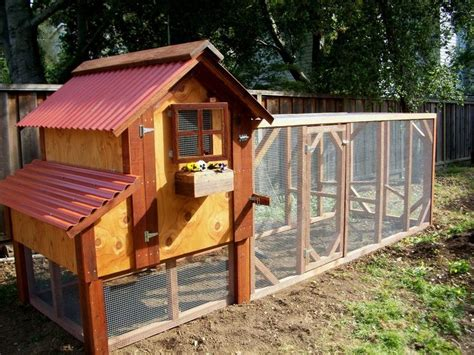 Backyard Chicken Coop Backyard Chicken Coop