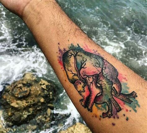 watercolor tattoo vermont 1000 ideas about anatomical tattoos on
