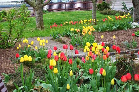 home flower home flower gardens http refreshrose blogspot com