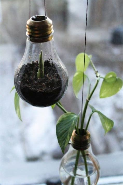 Flower Bulb Planter by 15 Innovative Ways To Repurpose A Light Bulb