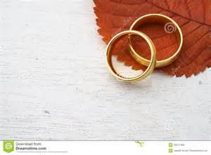 Autumn  Ee  Wedding Ee   Invitation Photo Image Of Leaf