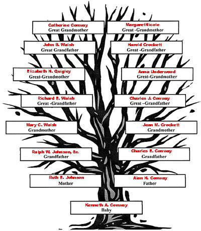 how to draw a family tree diagram family tree exle for clipart best