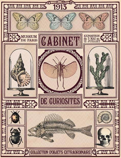 Papier Peint Cabinet De Curiosité by Papier Peint Cabinet De Curiosit 233 S Pixers 174 Nous Vivons
