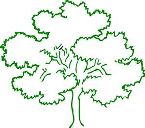 Tree Outline Green by Oak Tree Green Outline Frame Clip At Clker Vector Clip Royalty Free