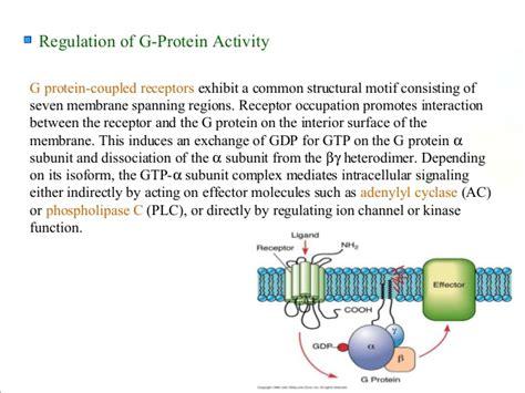 g protein signal transduction signal transduction