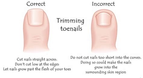 how to cut s toenails how to trim thick toenails step by step fix nails