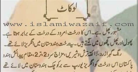 fruit k fawaid in urdu loquat ke fawaid islamiwazaif
