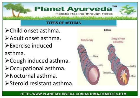 best ayurvedic treatment of asthma