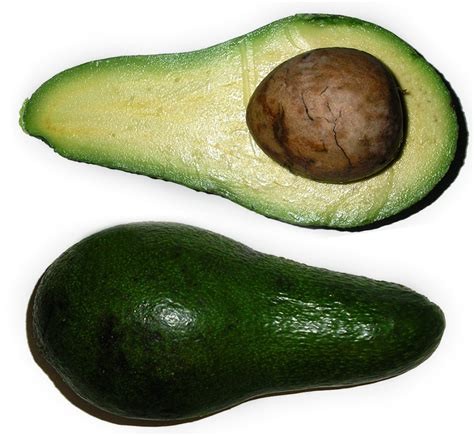 are avocados poisonous to dogs is it ok to feed dogs avocados what every deserves