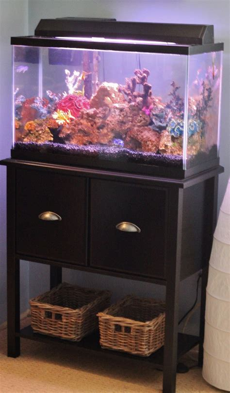Akuarium Tangki By Loak Cb 15 best images about fish tank on reptile