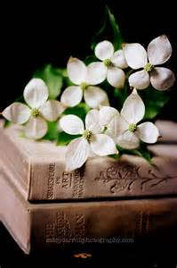 flower books in a soft light books and flowers