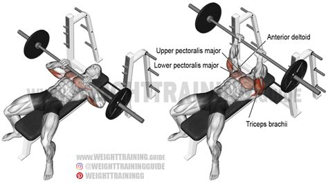close grip incline bench press close grip barbell bench press exercise instructions and video