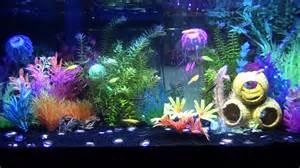 3 30 13 progress of glofish tank