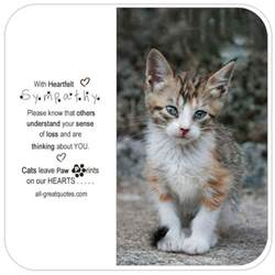 with heartfelt sympathy loss of a cat sympathy cards