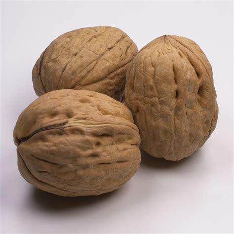 alimentazione antitumorale propriet 224 alimenti alimentazione sana e antitumorale