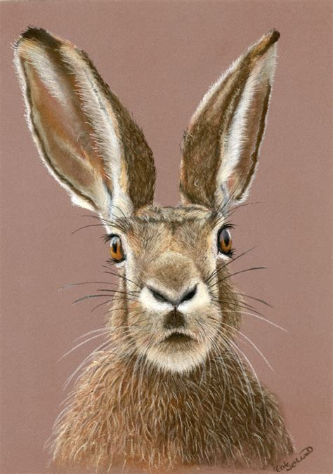 wild tame art hare print bunny art hare painting
