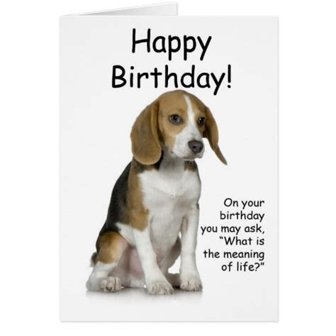Beagle Birthday Card The Gallery For Gt Funny Happy Birthday Beagle