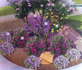 best 25 texas landscaping ideas on pinterest