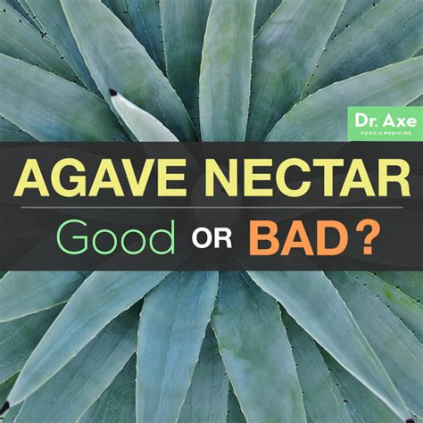 what is benefits of agave nectar for black women hair is agave nectar good for you