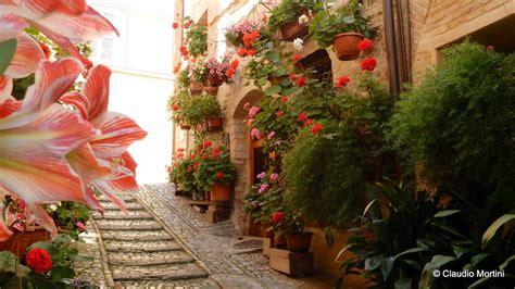 terrazze fiorite foto umbria spello balconi e vicoli fioriti 2016 hd