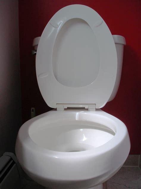 filetoilet seat upjpg wikimedia commons