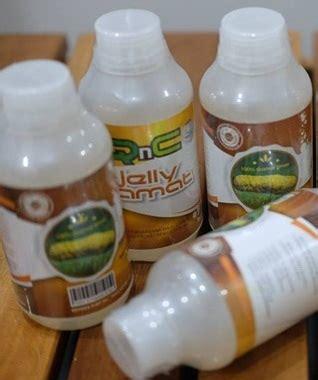 Qnc Jelly Gamat Obat Penyakit Ginjal cara menyembuhkan gagal ginjal kronis