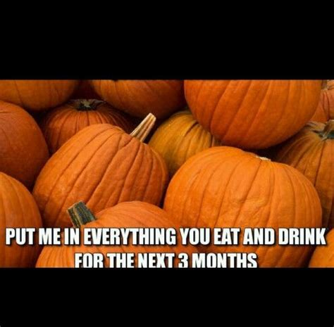 Pumpkin Spice Memes - pin by raven debose on i m the pumpkin scrooge i hate pumpkin season pinterest